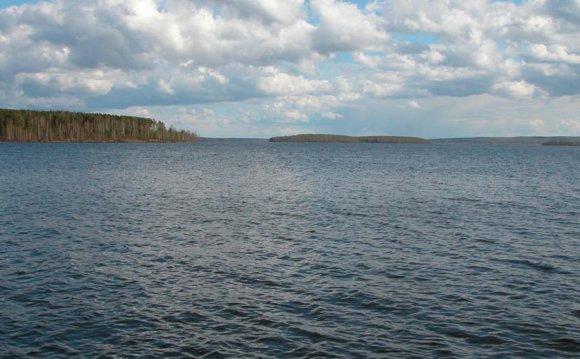 Чистая вода Волчихинского